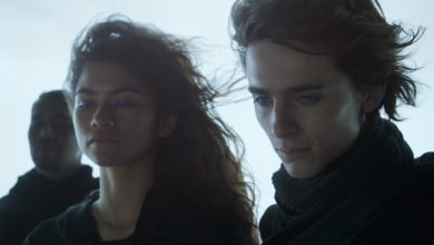 Photo of 'Dune' Has Epic First Day In France As Early Overseas Rollout Begins – International Box Office