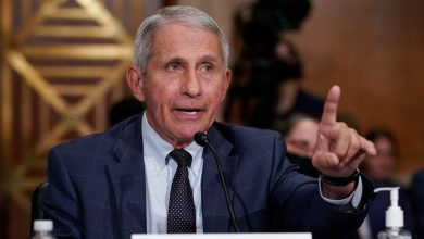 Photo of Dr. Fauci Says COVID-19 Vaccines Aren't Just a Personal Choice: 'It Isn't Only About You'